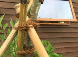 庭木の支柱